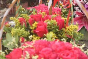Hoa hồng dịp 8.3: Hoa vườn siêu rẻ, hoa phố vẫn đắt