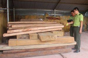 Điện Biên: Giải pháp nào cho bài toán bảo vệ rừng Mường Nhé?