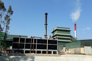 Nhà máy Mía đường 333 (Đắk Lắk) đổi mới công nghệ, nâng cao hiệu quả sản xuất, kinh doanh
