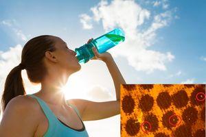 Phát hiện nước đóng chai Aquafina, Dasani, Lavie... chứa mảnh nhựa siêu nhỏ: WHO lên tiếng