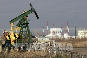 Giá dầu tăng gần 1% tại thị trường châu Á