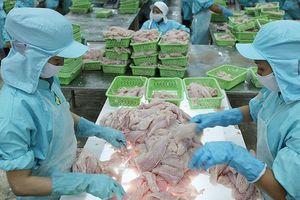 Xuất khẩu cá tra sang Mỹ: Cửa hẹp dần