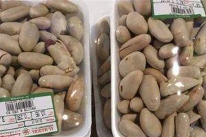 Hạt mít bán 200.000 đồng/kg tại Nhật: Chuyện không mới