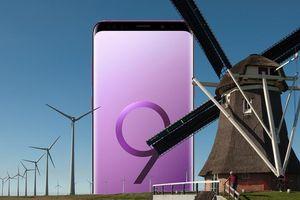 Tòa án Hà Lan đang đưa Samsung ra tòa vì không cập nhật điện thoại