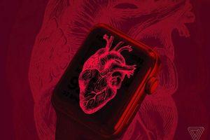 Smartphone và smartwatch giúp con người phòng chống các bệnh tim mạch như thế nào?