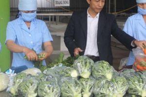 3 bí quyết cực độc giúp HTX bán hơn 35.000 tấn rau/năm, không lo ế