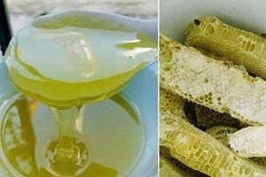 Công dụng tuyệt vời của mật ong bạc hà – đặc sản Hà Giang ít người biết