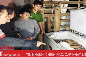Hà Tĩnh sẽ giao cá thể hổ chết nặng hơn 80kg phục vụ nghiên cứu