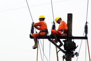 Điện lực diễn tập phòng chống bão cấp 12 ở Nghệ An