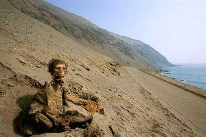 Xác ướp kỳ bí vùng sa mạc Chile