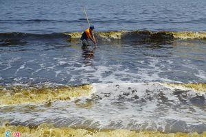 Xuất hiện tảo trong nước biển đổi màu bất thường ở Đà Nẵng