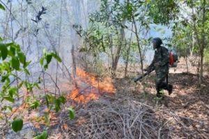 Đã khống chế vụ cháy rừng tại Khu bảo tồn Tà Cú