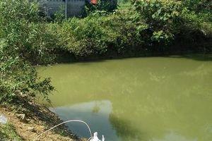 Ba bé trai chết đuối dưới ao nước gần nhà bà