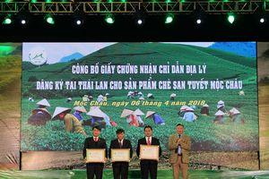 Chứng nhận chỉ dẫn địa lý Chè Shan tuyết Mộc Châu tại Thái Lan