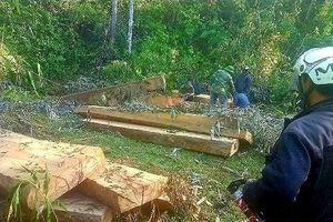 Kiểm lâm Ea Kar giải thích việc vắng mặt khi Chủ tịch xã gọi đi bắt gỗ lậu