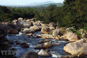 Cần điều chỉnh quy hoạch bảo tồn và phát triển Vườn Quốc gia Chư Yang Sin