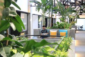 Coworking mô hình không gian làm việc cho cá nhân và doanh nghiệp