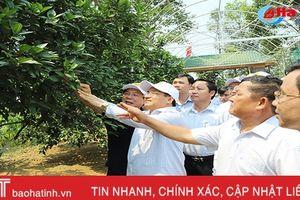 Đại biểu cả nước ấn tượng với những KDC kiểu mẫu, vườn mẫu Hà Tĩnh