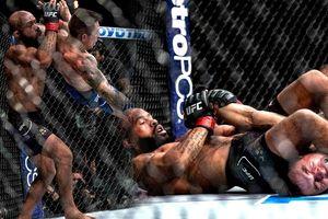 Clip: Những pha ra đòn siêu đẳng trên sàn võ tự do MMA