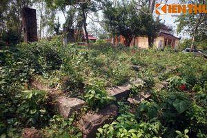 Ngôi chùa nằm bên phế tích Chăm cổ hiếm có ở VN