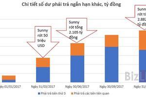 Quốc Cường Gia Lai đã nhận của Sunny Island gần 3.000 tỷ đồng cho dự án Phước Kiển