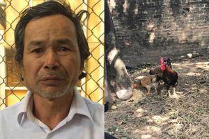 Khởi tố đối tượng cầm búa đập chết em ruột và hàng xóm vì 2 con gà làm đám giỗ bị cân thiếu