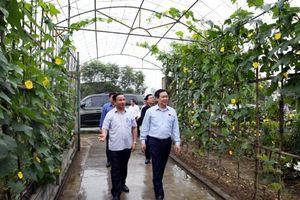 'Các địa phương hãy học cách làm nông thôn mới của Hà Tĩnh'