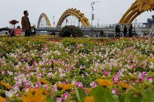 Đẹp ngỡ ngàng đường hoa chào Xuân 2018 ở Đà Nẵng