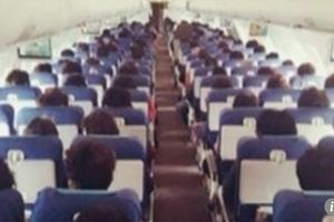 Tiếp viên hàng không bị chỉ trích khi ví tóc của hành khách như 'vườn cải xanh'
