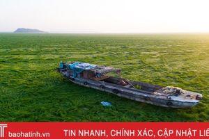 Hạn hán biến hồ nước ngọt lớn nhất Trung Quốc thành đồng cỏ