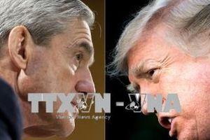 Nhà Trắng lên tiếng về thông tin sa thải quan chức điều tra Nga can thiệp bầu cử