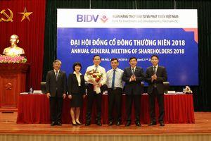 BIDV - Ngân hàng có quy mô dẫn đầu thị trường