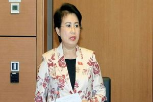 Đề nghị khai trừ Đảng Phó bí thư Đồng Nai Phan Thị Mỹ Thanh