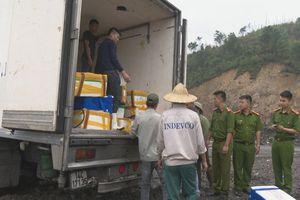 Quảng Ninh: Hơn 3,5 tấn cá nhập lậu được tiến hành tiêu hủy