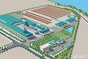 Nghệ An: Chuẩn bị khởi công thêm nhà máy gỗ hơn 2.000 tỷ đồng