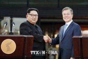 Lãnh đạo Hàn Quốc, Nga ủng hộ hợp tác ba bên với Triều Tiên
