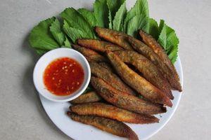 Đông y gọi loài cá này là 'nhân sâm nước': Bổ thận tráng dương, dinh dưỡng toàn diện