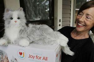 Mèo robot đã ra đời, đáng yêu không kém gì mèo thật, lại rất dễ 'nuôi'