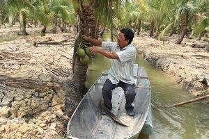 Khi nông dân TPHCM 'chuyển bộ'