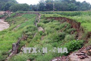 Cần sớm khắc phục sự cố sạt lở kè sông Lô