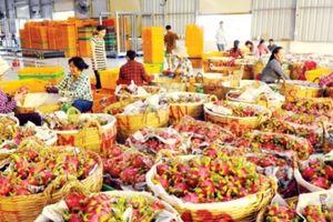 Đoàn 65 doanh nghiệp Bỉ đến Việt Nam tìm cơ hội đầu tư, kinh doanh
