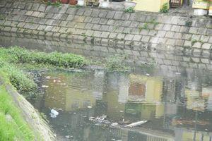 Báo động về tình trạng ô nhiễm môi trường tại phố cổ Hội An