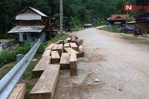 Vụ gỗ lậu nằm la liệt trên đường ở Nghệ An: Chính quyền vào cuộc