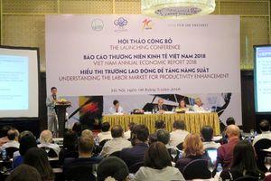 Năng suất lao động 3 ngành 'lõi' Việt Nam xếp sau Campuchia