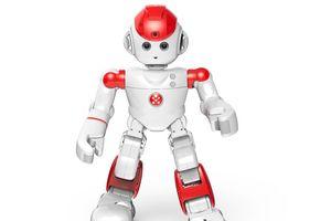 Robot hấp dẫn nhất cho gia đình