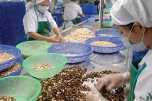 Những vấn đề đáng chú ý khi Việt Nam tham gia CPTPP