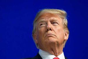 Tổng thống Trump và 'cây gậy' chính sách