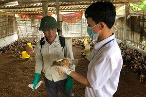 Nhiều xã đề xuất giữ lại khuyến nông, thú y cơ sở