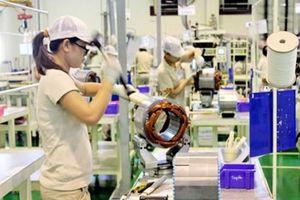 Thực tập sinh Việt Nam ở Nhật Bản có bị lợi dụng?