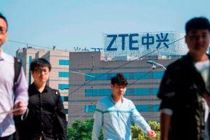 Nhượng bộ Trung Quốc, Mỹ tính nới lệnh cấm chống 'đại gia' viễn thông ZTE